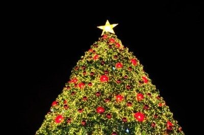 Holiday Events You Can't Miss in Dallas, TX