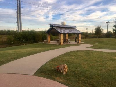 Frisco Dog Parks Yelp