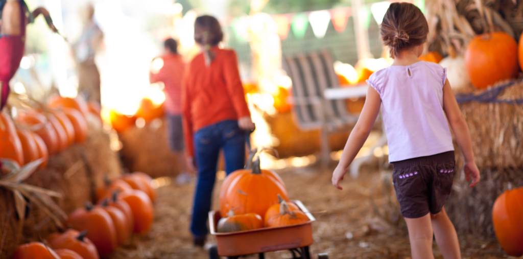 This Year's Can't-Miss Fall Festivals