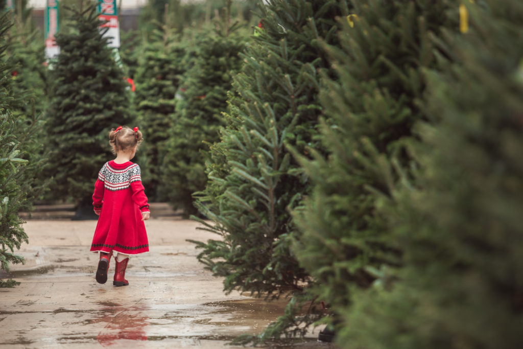 Christmas in Dallas-Fort Worth: The Ultimate Guide to Making the Season as Magical as Possible